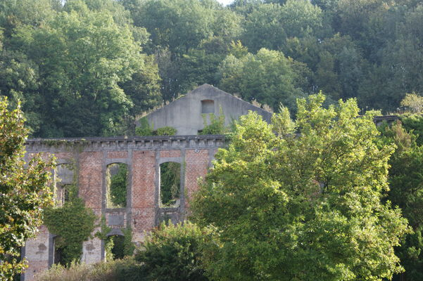Ruines de l'abbaye.JPG