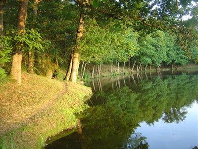 Argentonlesvallees-lac-refletdété-©James Hervé.JPG