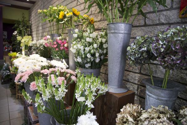 floribel-fleurs9-mons.jpg