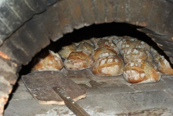 Journée du pain et de la pizza.jpg