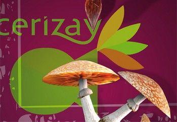 cerizay_s_expose_1380813423.jpg