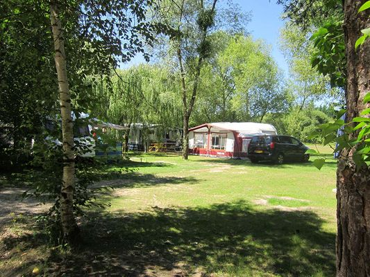 camping-sites-et-paysages-les-saules-à-cheverny-loire-valley-a-côte-du-grand-champ.jpg