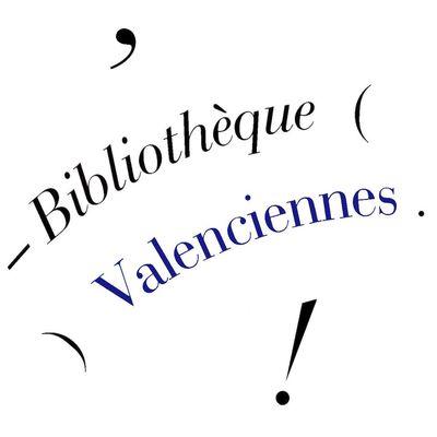 bibliothèque-valenciennes.jpg