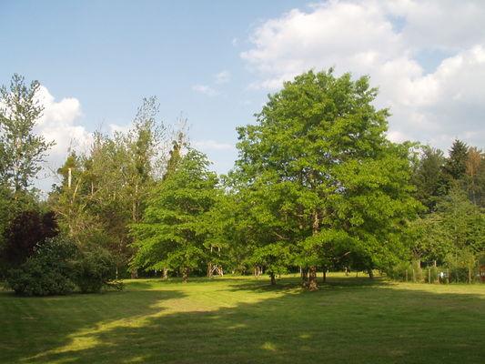 Parc au Village de gîtes Le Moulin de Crouy