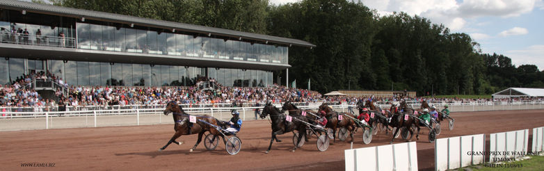 Double-sulky races - Ghlin | VisitMons - The Official Tourism