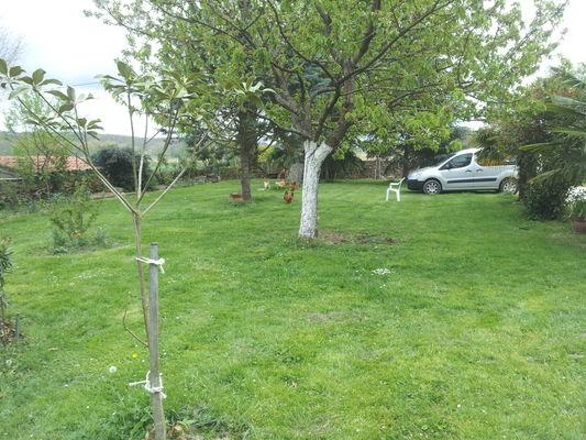 Audirac-jardin (1).jpg