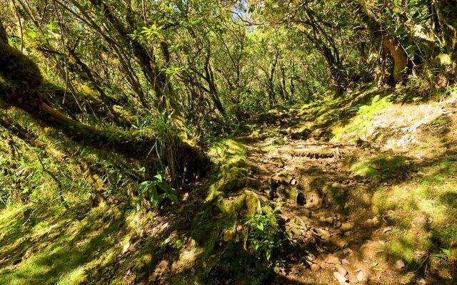 Hell Bourg - Cap Anglais - Gite du Piton Des Neiges-15.jpg