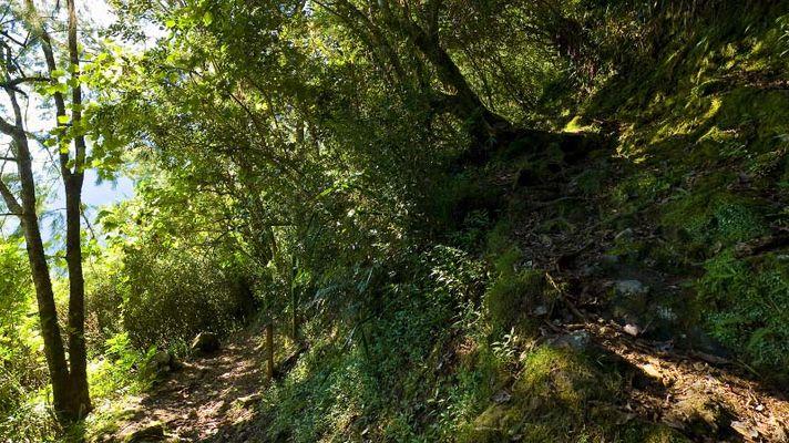 Hell Bourg - Cap Anglais - Gite du Piton Des Neiges-5.jpg