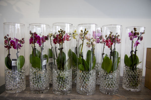 atelierkla-vase1-mons.jpg