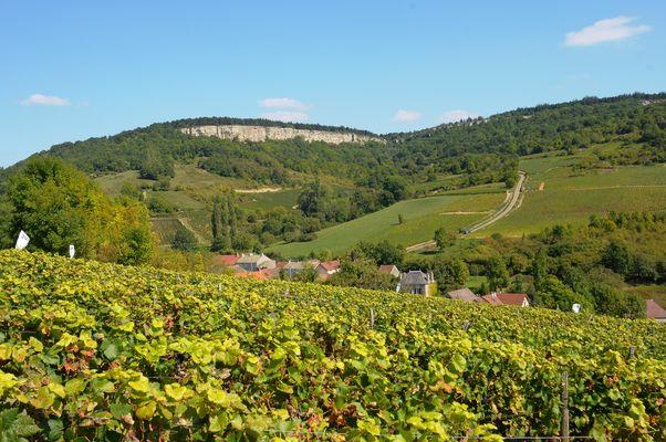 Vignoble des Hautes de Beaune & Baubigny©Image&associés