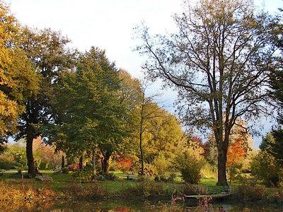 Arboretum5-sit.jpg