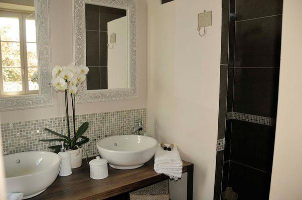 Salle de douche de la Chambre d'hôte L'Onzaine à Onzain