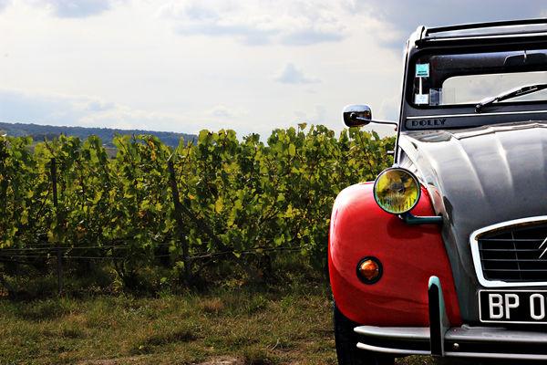 A l'Allure Champenoise ©Clément Richez pour l'Office de tourisme de l'Agglomération de Reims.jpg