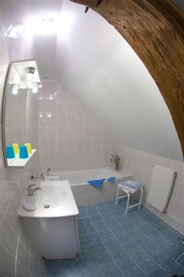 salle de bain Bleuet.jpg