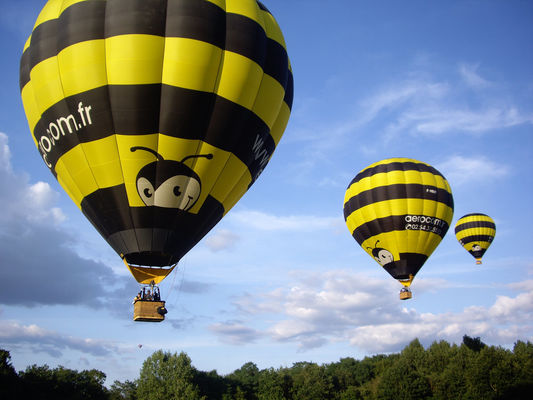 Vol avec Aérocom montgolfière au dessus de la Loire