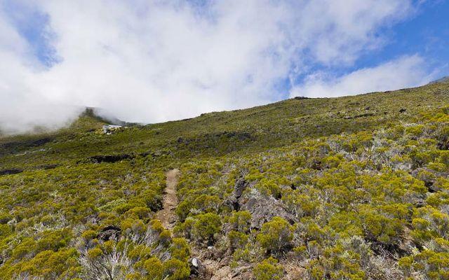 Hell Bourg - Cap Anglais - Gite du Piton Des Neiges-21.jpg