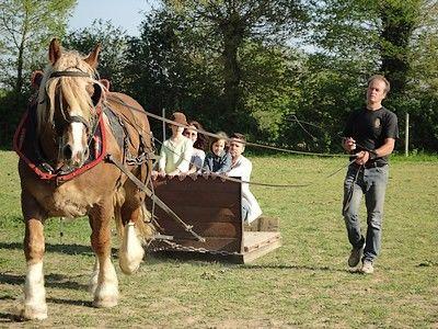 Ferme du cheval (2)-internet.jpg
