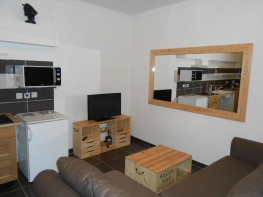 Appartements LES OLIVIERS _salon - Meublé Saisonniers - La Maison d'Olivier.jpg
