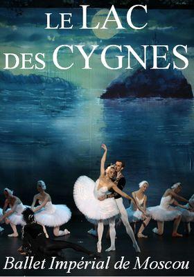 lac-des-cygnes-arènes-petite-foret-valenciennes-tourisme.jpg