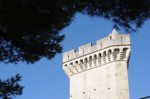 Château de Beaucaire 004.jpg