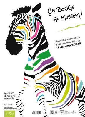 AfficheMuseumA3 (1).jpg