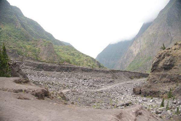 Nez de Boeuf-Roche Plate (rivière des remparts)-12.jpg