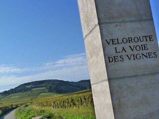 Porte de la Voie des Vignes©L Dallerey