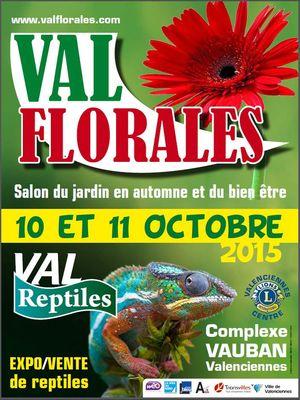 val-florales-2015--valenciennes-tourisme.jpg