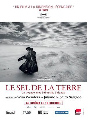 LE-SEL-DE-LA-MER-ciné-club-valenciennes-tourisme.jpg