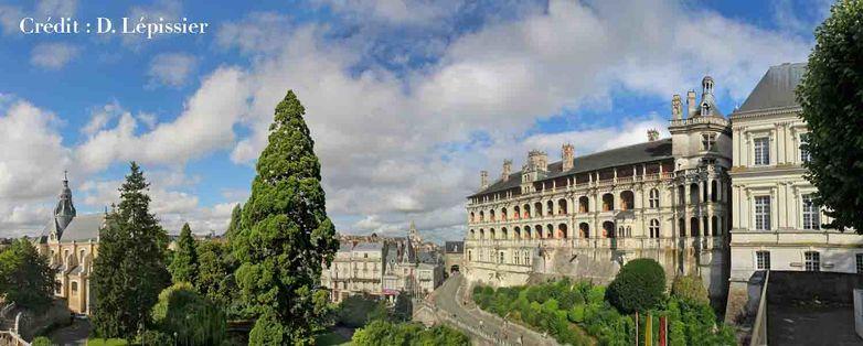 Château Royal de Blois en Val de Loire