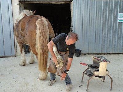 Ferme du cheval1-internet.jpg