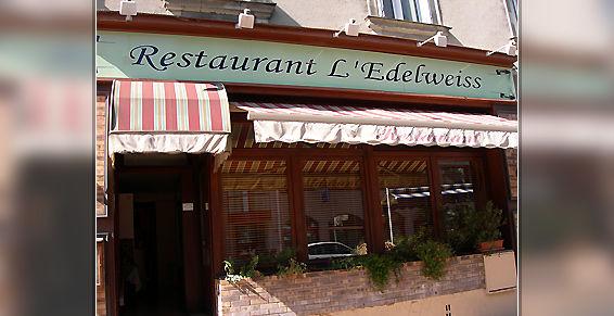 Edelweiss1.jpg