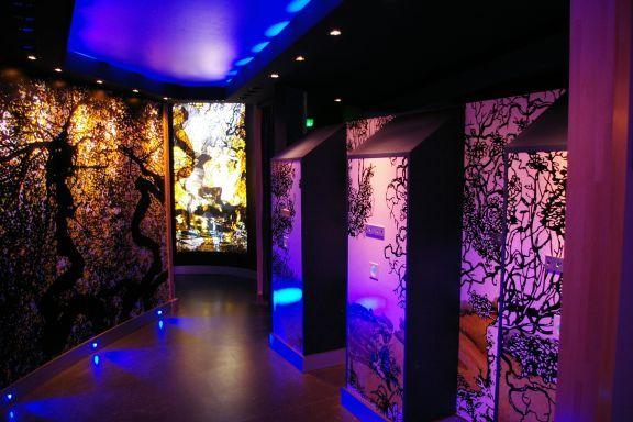 le phare de verzenay mus e de la vigne verzenay site officiel du tourisme en champagne ardenne. Black Bedroom Furniture Sets. Home Design Ideas