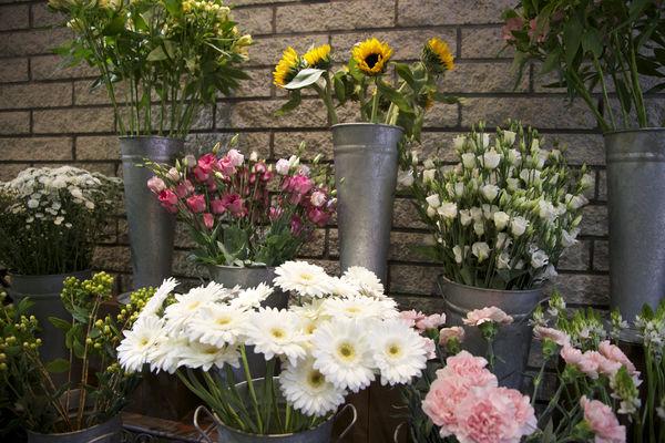 floribel-fleurs6-mons.jpg