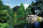 jardin rhonelle.jpg