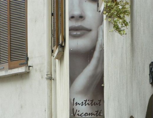 Institut Vicomte.jpg