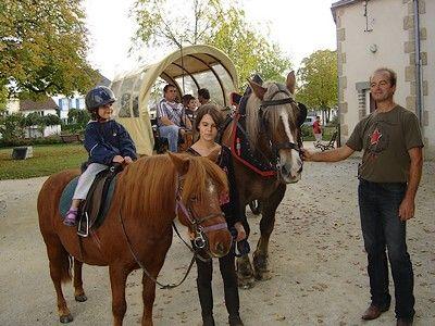geff roulottes-balade poney-sit.jpg