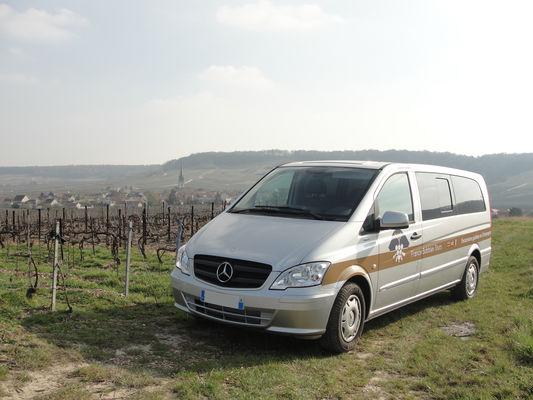 Mercedes dans les vignes Champagne 3.JPG