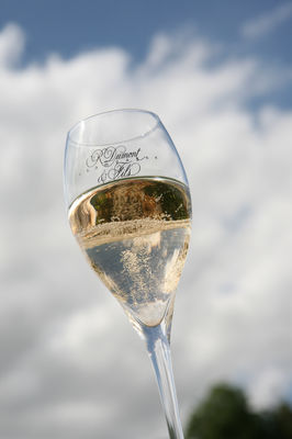 Champagne Dumont(5).JPG