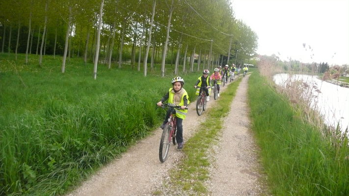 Vélo-voie au début du printemps.JPG