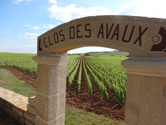 Clos des Avaux-© L Dallerey