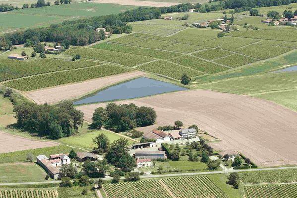 Domaine de Laougue