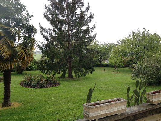 Parc arboré