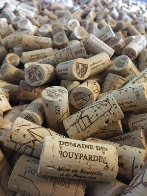 Soirée rosé au domaine de Pouypardin