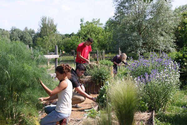 Jardin Artpiculture à Jû-Belloc