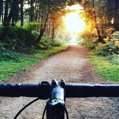Gascogne Bike Hire