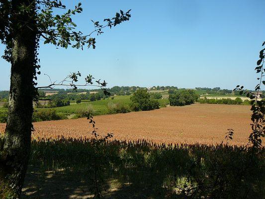 """Promenade et randonnée """"Vers le Château des Evêques"""""""