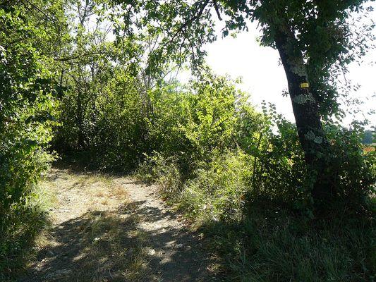 Petite randonnée dans la campagne gersoise