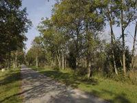Marais de la Souche < Pierrepont < Aisne < Picardie