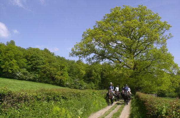 A cheval le long de la vallée de l'Aisne
